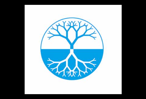 BlueTree Network