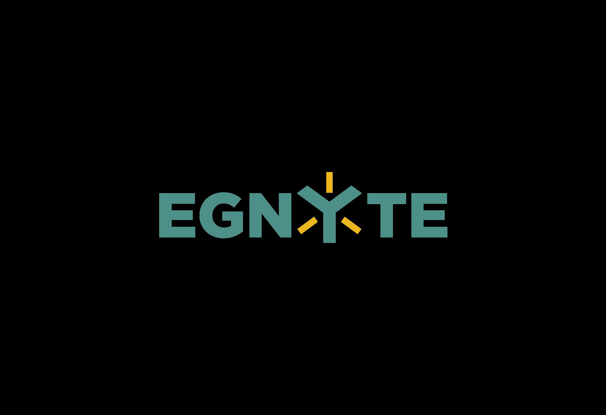 EGNYTE Identity Design